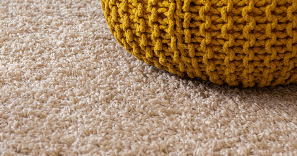 carpet with urine stain